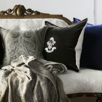 cushion image (1)